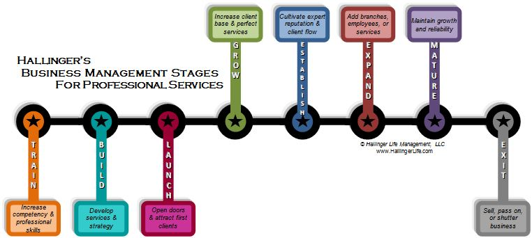 Hallinger's Business Management Stages for Professional Services